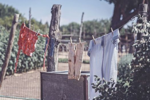 clothesline-2556058__480