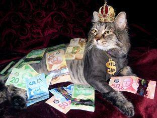 money-1144553__480